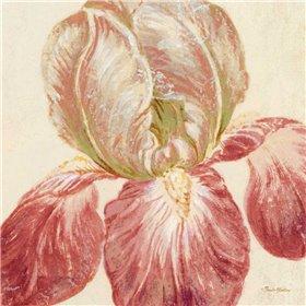 Floral Fresco III