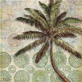 Delray Palm II