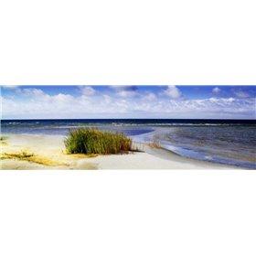 Cedar Island Beach I