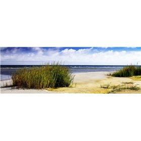 Cedar Island Bay II