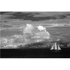 Port Townsend Sailboat I