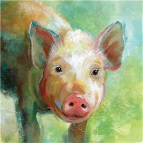 Colorful Quirky Pig