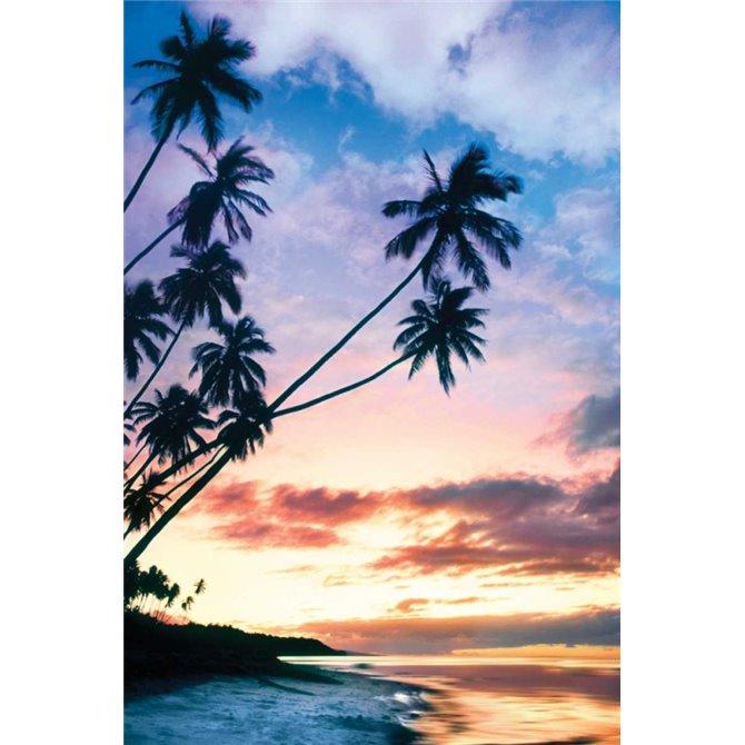 Molokai Palms At