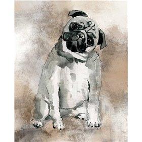 Sketchy Study Pug