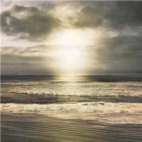 Suns Grace