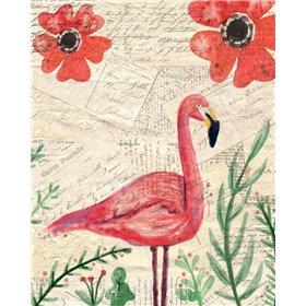 Postcard Flamingo 1