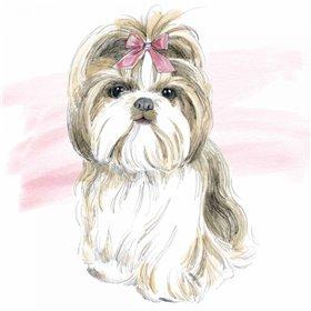 Glamour Pups VIII