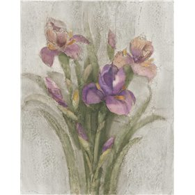 Purple Iris Garden on Grey
