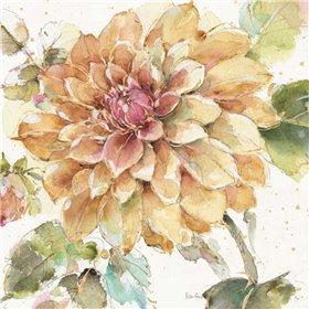 Country Bloom V