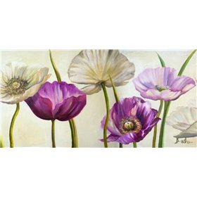 Poppies in Spring II