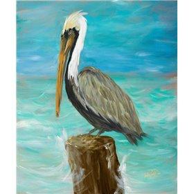 Single Pelican on Post