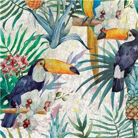 Tropical Life 1