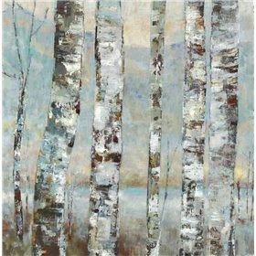 Winter Birch I