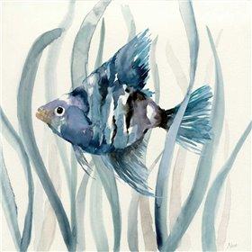 Fish in Seagrass II