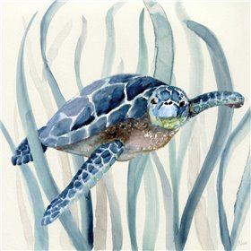 Turtle in Seagrass I