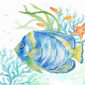 Sea Life Serenade I