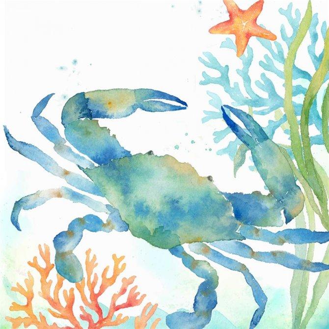 Sea Life Serenade II