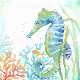 Sea Life Serenade III
