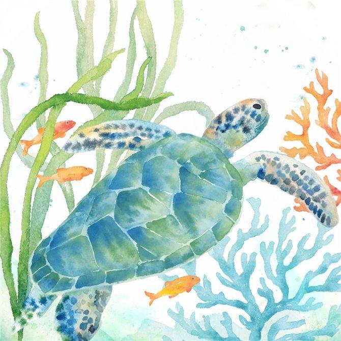 Sea Life Serenade IV