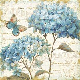 Blue Garden IV