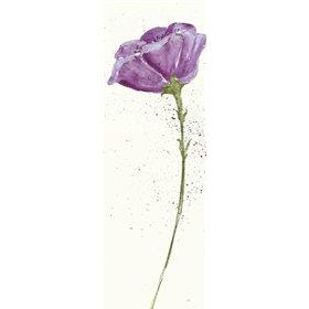 Mint Poppies II in Purple Crop