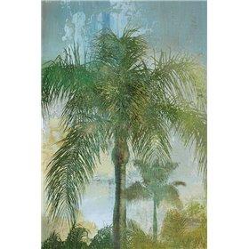 Contemporary Palm