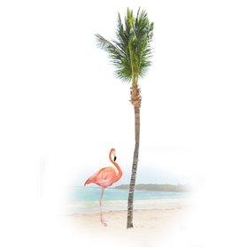 Flamingo in Paradise