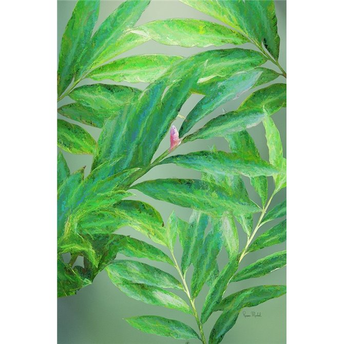 Tropical Leaves IV