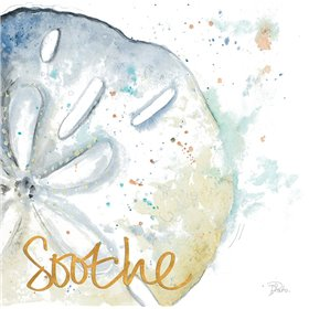 Soothe Water Sand Dollar