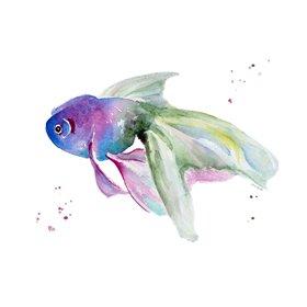 Aquarium Life III
