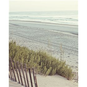Beach Fence I