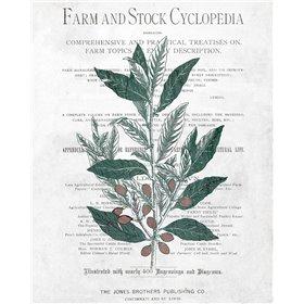 Botanical 1