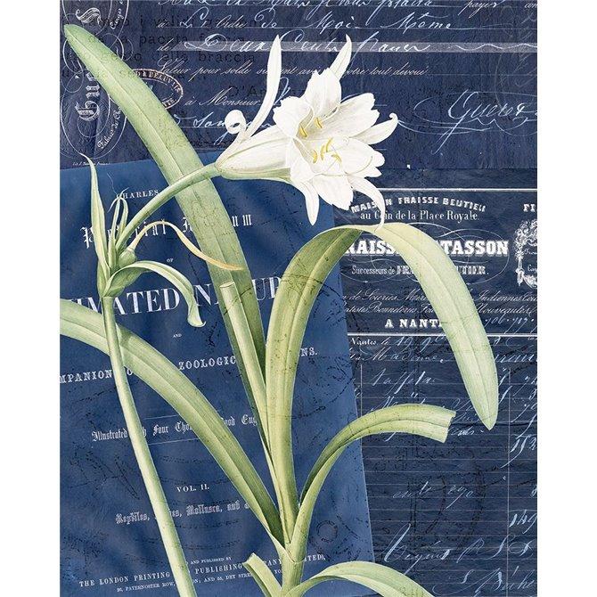 Postcard Vintage Floral 1