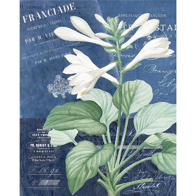 Postcard Vintage Floral 2