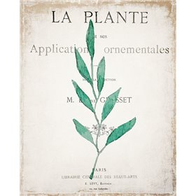 Botanical Pages 1