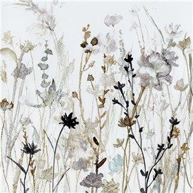 Wildflower Mist II