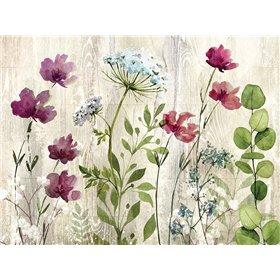 Meadow Flowers I