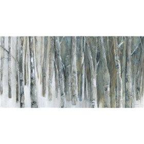 Banff Birch