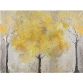 Yellow Grove