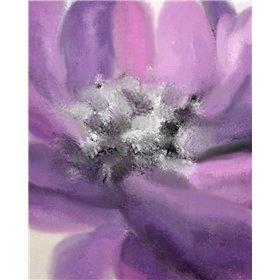 Blooming Purple 1