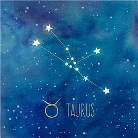 Star Sign Taurus