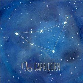 Star Sign Capricorn