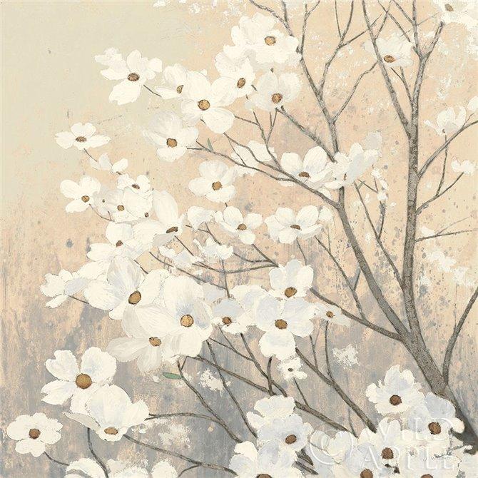 Dogwood Blossoms II Neutral
