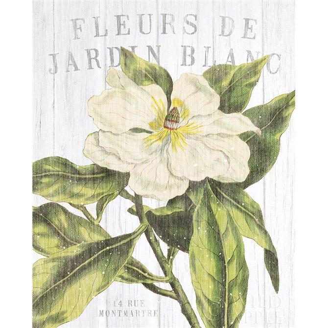 Fleuriste Paris II