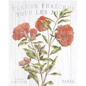 Fleuriste Paris III