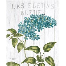 Fleuriste Paris V