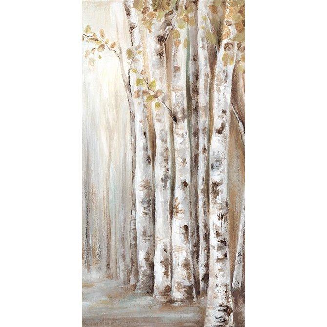 Sunset Birch Forest II