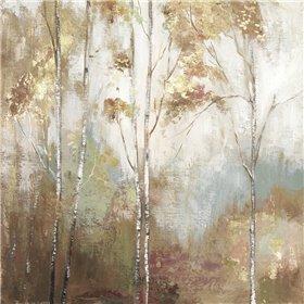 Fine Birch II