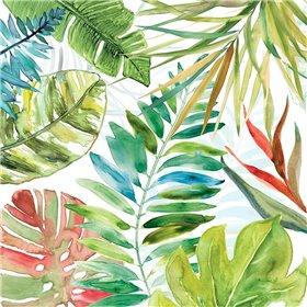 Tropical Sketchbook II