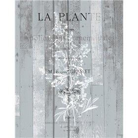 La Plante 1